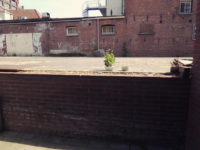 urban-tuinieren