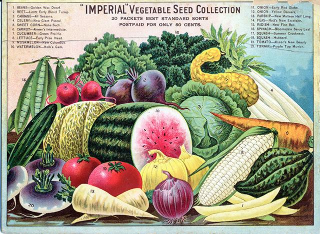 Vintage Veggies
