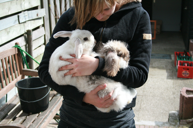 Ik en Wesseltje (in de konijnenhemel nu) en Bunny von D. het leukste konijn van de wereld