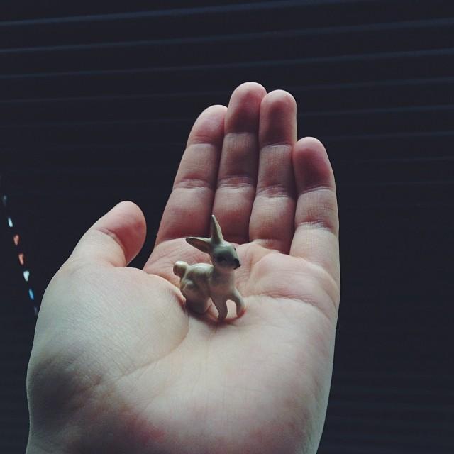 mini konijntje