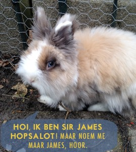 Sir James Hopsalot