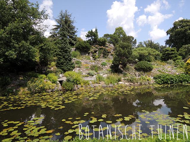 utrecht botanische tuinen