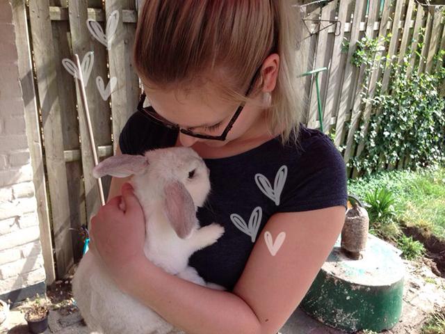 Een konijn als huisdier