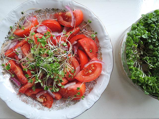 salade met kiemgroente