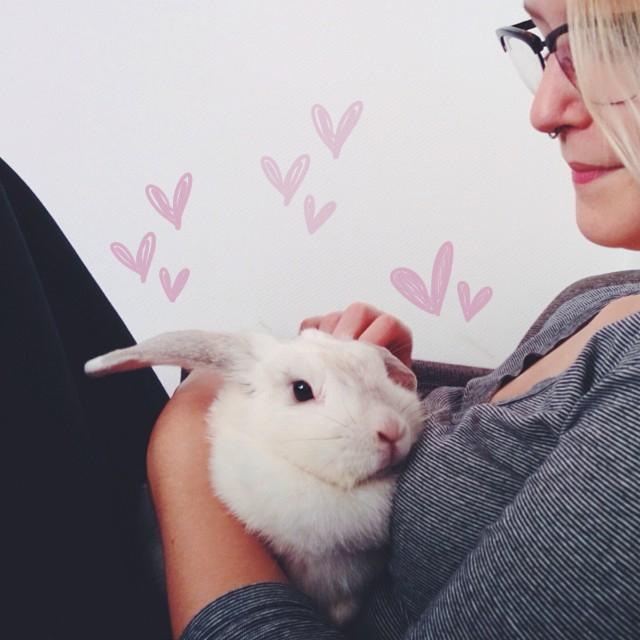 knuffelen met bunny von d