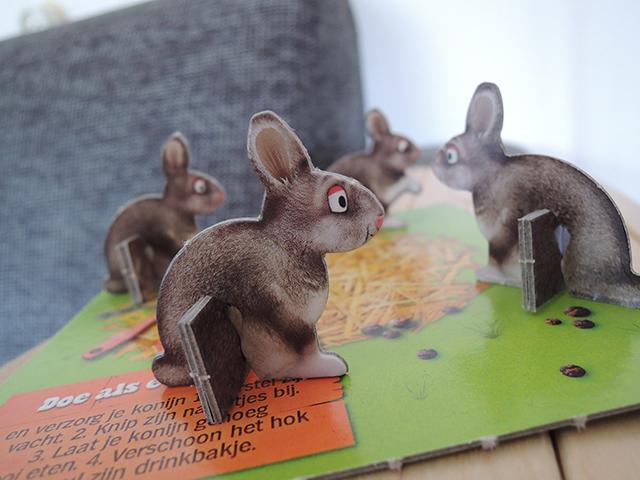 konijn boerderijdier