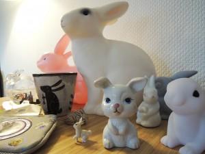 konijnen verzamelen
