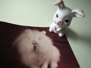 konijnenbeeldje