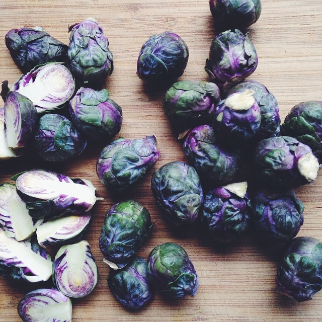 paarse spruitjes