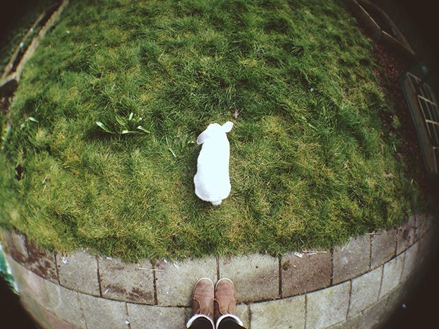 grasveldje