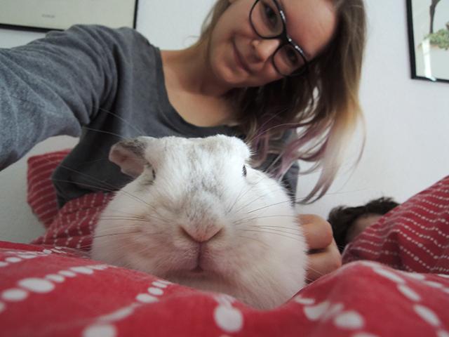 schattigste konijn van de wereld