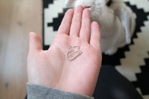 Konijnen paperclip