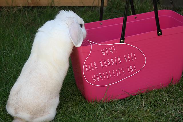 Stoffen tas waar te koop : Winactie vrolijke hinza tas van waar ikbenirisniet