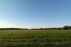 Het Witte Veen bij Buurse