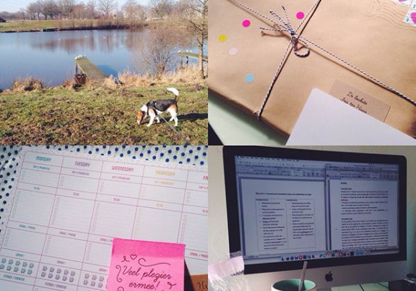weekplanner van team confetti