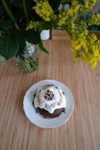 benevo organic dog cake mix
