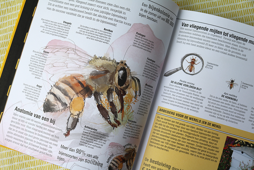 Het Complete Bijenboek - Review