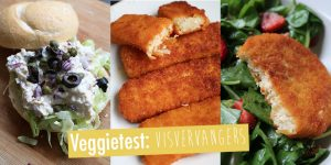 Veggietest: Vegetarische visvervangers