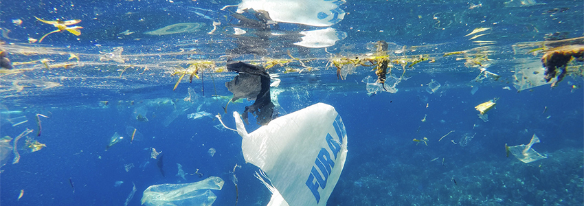 a plastic ocean documentaire op netflix